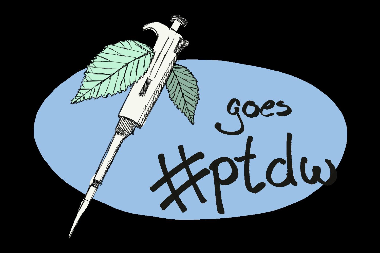 PnP goes PTDW