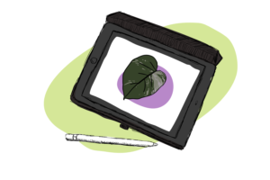 Drawing Plants and Pipettes