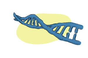 DNA sequencing – The Methods that Made us
