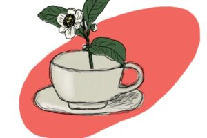 National Tea Day - our nerdy tea facts