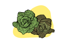Blast in the Past makes Lettuce Less Limp