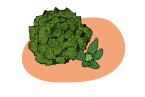 Turning Cabbage into Cauliflower